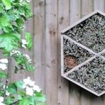 Bristol Airport installs 'bee bed and breakfast' to enhance biodiversity on and around the site