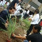 The Hotel's Organic Herb Garden