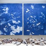 Christine Nguyen, Bones and Barnacles, Cyanotype (made with collected objects from the Salton Sea) and salt crystals, bones and barnacles, and salt.