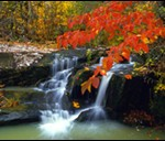 Fall color at the Cossatot River