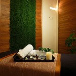 10th Anniversary Treatment Offered by the Spa at Four Seasons Hotel Tokyo at Marunouchi