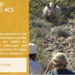 WILDERNESS SAFARIS LAUNCHES NEW LOOK WEBSITE