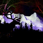 Bring a stroller, wagon, or other kiddie conveyance to WildLights adorned in festive seasonal decorations for Woodland Park Zoo's Illuminated Stroller Parade Thursday, December 14, 6:45 p.m. Participation is free and children age 2 and under are admitted free to WildLights
