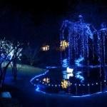Hard Work Makes Holiday Lights at Garvan Woodland Gardens Happen