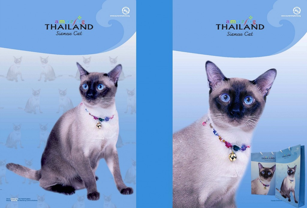 """Tourism Authority of Thailand rolled out promotional Amazing Thailand Siamese cat paper bags to promote its """"Thainess"""" concept"""