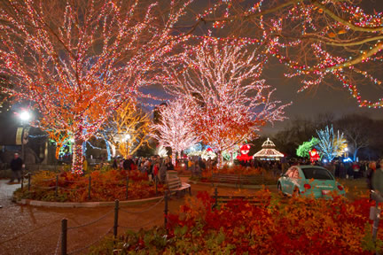 Lincoln Park Zoo to transform into winter wonderland during the 19th annual ZooLights Presented by ComEd and Charter One