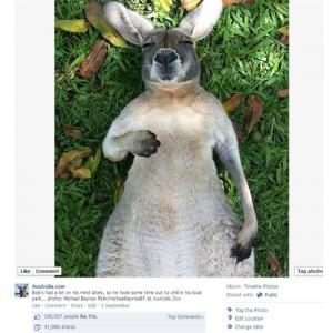 Tourism Australia boasts 5 million Facebook page fans worldwide