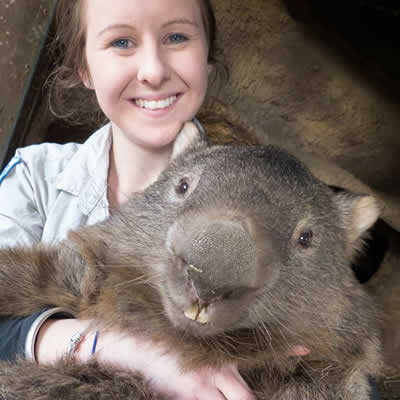 29 year old wombat virgin Patrick received 258k 'likes' helping Tourism Australia's Facebook page reach six million fans