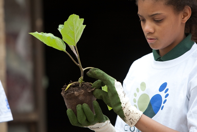 The Ritz-Carlton Hotel Company becomes the first Founding Partner of IMPACT 2030: The Global Initiative for the Advancement of Corporate Volunteering
