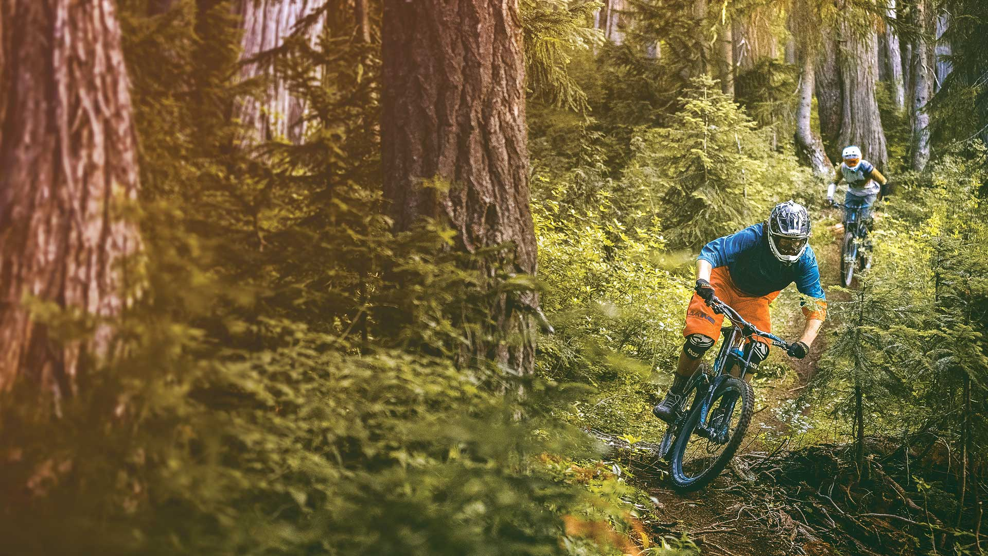 Whistler Mountain Bike Park to open to riders for the 2016 season on May 20