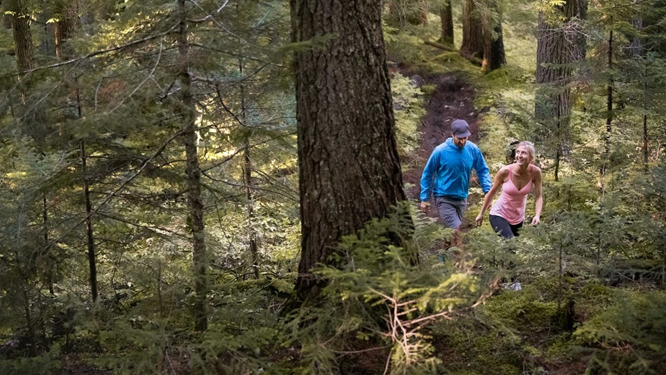 Whistler Blackcomb announces new uphill hiking experience, The Blackcomb Ascent Trails