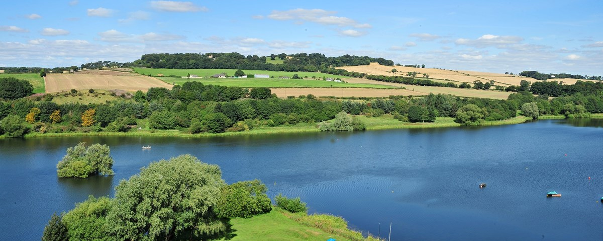 New Strategic Management Group to set out clear action plan to address the West Lothian loch's water quality