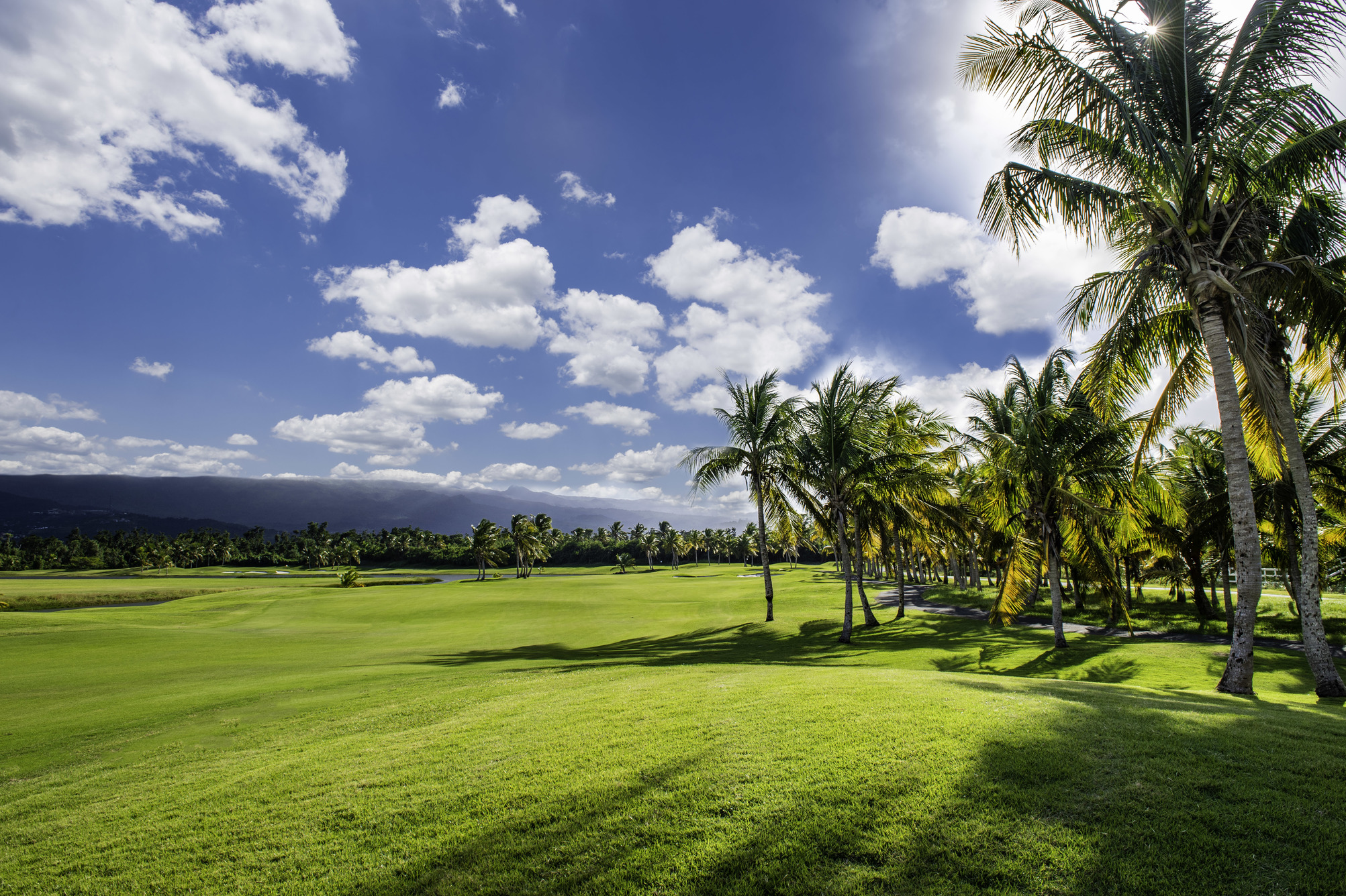 golf course, golf, island, Caribbean