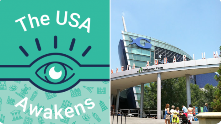 Tiqets #USAwakens: discovering a world under the sea with #whale #sharks, #beluga whales and other marine life at the Georgia Aquarium